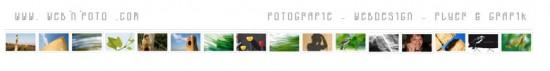 webnfoto.com header